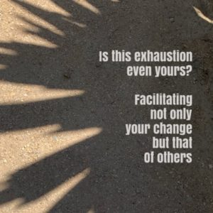 Tired, Angry, Super Placid? What if you are facilitating change?
